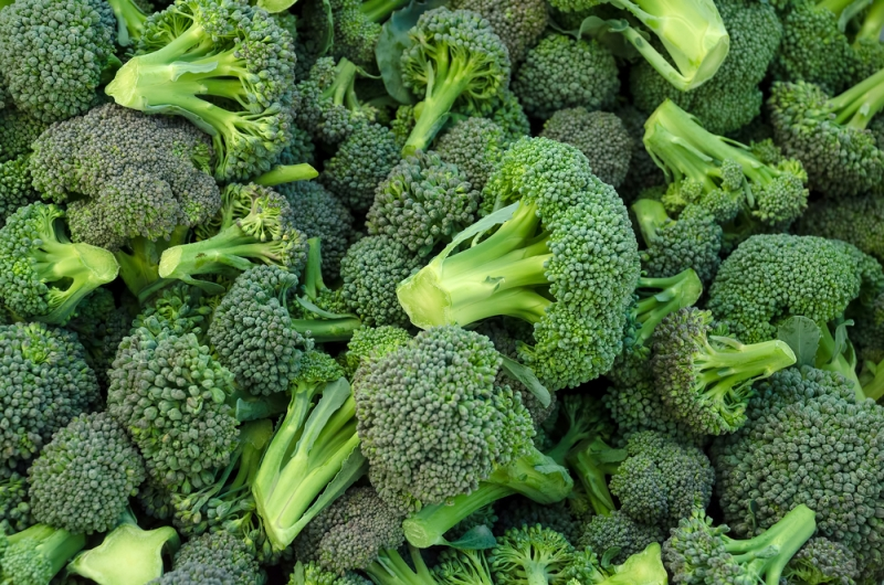 Sulforafano e germogli di broccoli, gli alleati anti-cancro